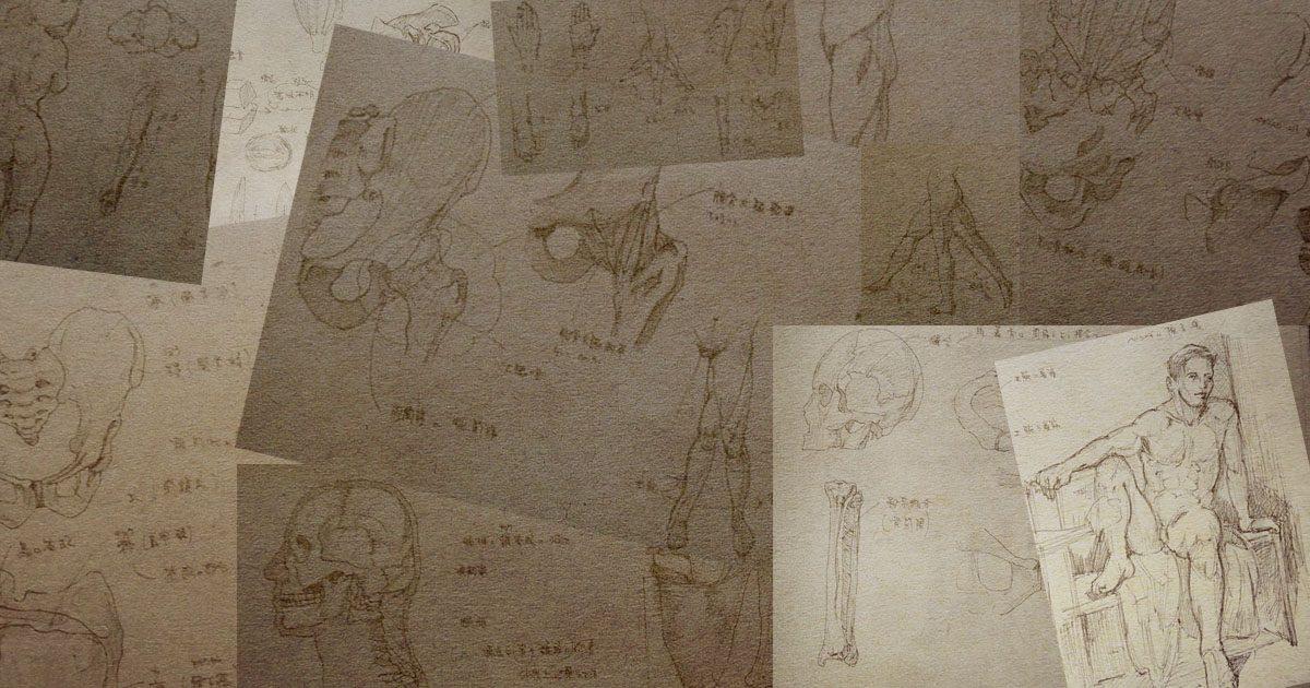美術解剖学をはじめてとりあえず1週間経ったよ!