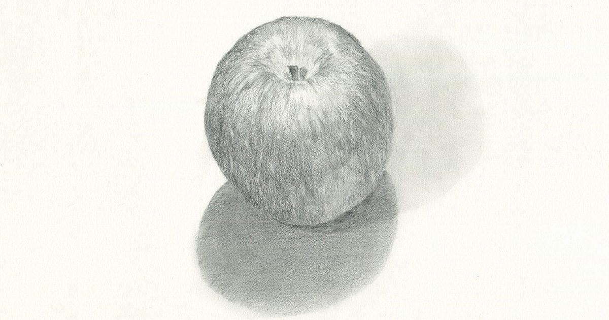 観察力を身につけるために-りんごのデッサン